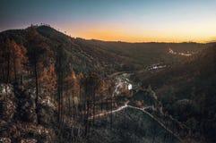 Сгорели ландшафт Стоковые Изображения
