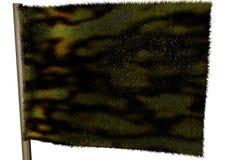 сгорели флаг экологичности Стоковое Изображение RF