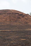 Сгоренный после огня горы Стоковая Фотография