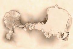 Сгоренный через бумагу стоковые изображения rf