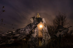 Сгорели дерево - ландшафт полнолуния ночи Стоковое Изображение