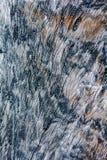 сгорели текстура деревянная Стоковые Изображения
