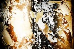 Сгорели плакат Стоковое Изображение RF