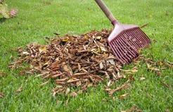сгребалка листьев совместно стоковые фото