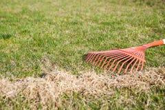 сгребать травы стоковые изображения rf