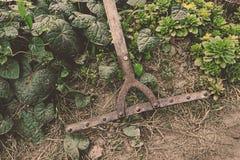 Сгребалка землепашества для засаживая урожаев Стоковое Изображение