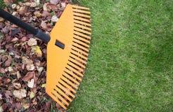 сгребалка листьев Стоковое фото RF