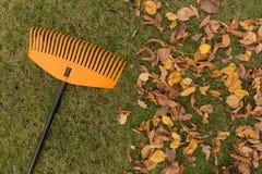 сгребалка листьев Стоковые Изображения RF