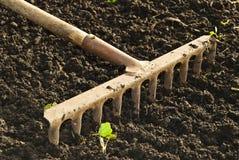 Сгребалка. стоковое изображение rf