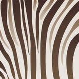 сделайте по образцу зебру иллюстрация вектора