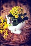 сделайте цветки ее сообщение влюбленности много бак ow вы Стоковые Изображения