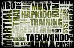 сделайте tae kwon иллюстрация вектора
