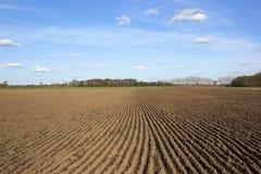 Сделанная по образцу вспаханная почва в весеннем времени Стоковое фото RF