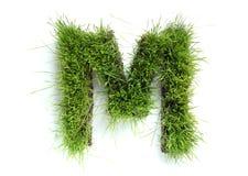 сделанные письма травы Стоковые Фотографии RF