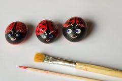 Сделанный дом 3 покрасил камни как ladybugs на белой предпосылке, Стоковые Фотографии RF