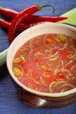 сделанный суп sauerkraut Стоковое Изображение