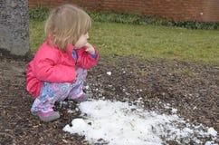 сдержанный последний снежок стоковые фотографии rf