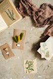Сдирать положение, взгляд сверху гербария, высушенные цветки лаванды, тетрадь, книга для примечаний, ручка и изображения лета вес Стоковая Фотография RF