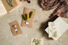 Сдирать положение, взгляд сверху гербария, высушенные цветки лаванды, тетрадь, книга для примечаний, ручка и изображения лета вес Стоковые Фотографии RF