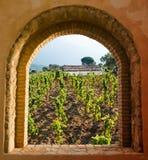 сдобренное окно виноградника Стоковые Изображения RF