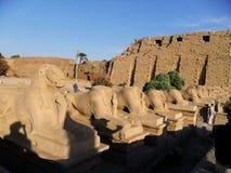 Северная Африка, Египет, Luxor Temple Стоковое Изображение