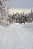 северная дорога Стоковое фото RF