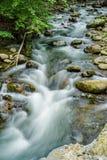 Северная заводь - одичалый поток форели горы - 3 стоковые фото