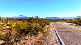 Северная замотка шоссе Буша через полу-пустыню глуши 4 пиков в Аризоне стоковые изображения rf