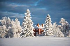 северная зима Швеции Стоковое Изображение
