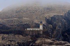 Северная колония вокруг маяка, басовый утес gannet, Scotlan Стоковое Изображение
