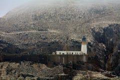 Северная колония вокруг маяка, басовый утес gannet, Scotlan Стоковые Изображения