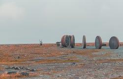 Северная Норвегия Nordkapp, мир на скульптурах земли при северные олени идя вокруг Стоковое Изображение