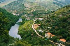 Северная Португалия Взгляд сверху реки, и виноградники на холмы стоковая фотография rf