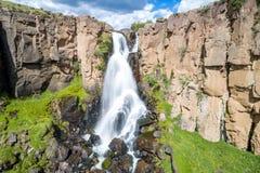 Северная ясная заводь падает в Creede Колорадо Стоковое Изображение