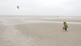 Северное море девушки сидит стоковое фото rf