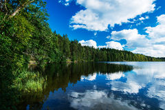 Северное озеро в пуще Стоковое Изображение RF