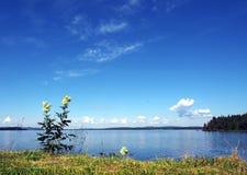 Северное озеро стоковое фото rf