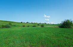 северное русское село Стоковая Фотография