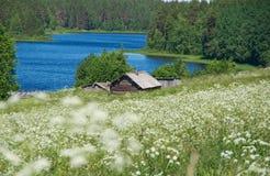 северное русское село Стоковое Изображение RF