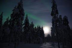 Северное сияние в зиме Лапландии, Финляндии стоковое изображение