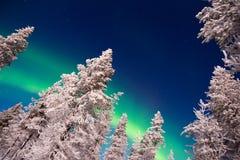 Северное сияние, северное сияние в Лапландии Финляндии Стоковая Фотография