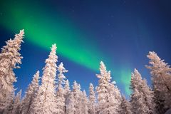 Северное сияние, северное сияние в Лапландии Финляндии Стоковое Изображение RF
