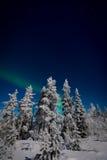 Северное сияние в Лапландии Стоковая Фотография RF