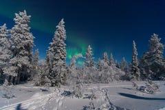 Северное сияние в Лапландии Стоковые Изображения RF