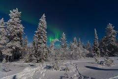 Северное сияние в Лапландии Стоковое фото RF