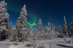 Северное сияние в Лапландии Стоковое Изображение