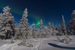 Северное сияние в Лапландии Стоковые Фото