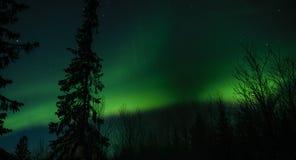 Северное сияние в русском Лапландии, полуострове Kola стоковое изображение rf