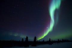 Северное сияние над ледовитой тундрой Стоковые Фото