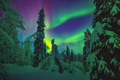 Северное сияние над Лапландией Стоковая Фотография RF